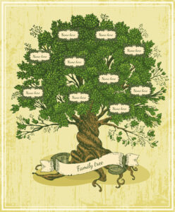 Tipos de árbol genealógico